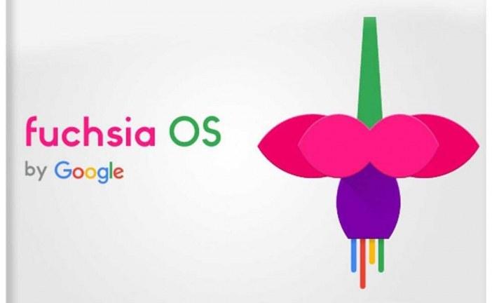 """جزئیات پروژه """" فیوژا """" در گوگل"""