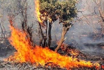 اعزام آتش نشانان تبریز برای اطفاء حریق جنگلهای ارسباران