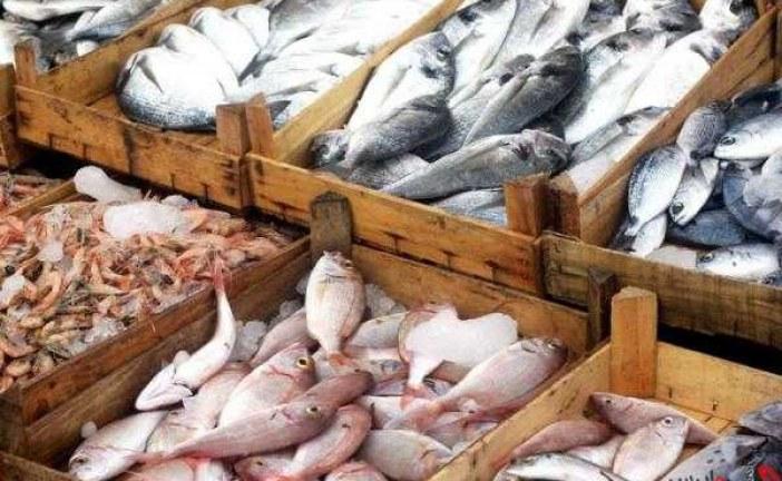 قیمت ماهی در ایران 'بالا' است