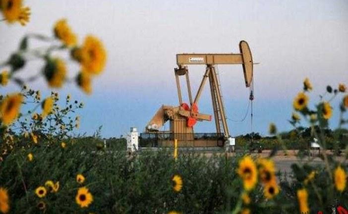 ادامه روند صعودی قیمت نفت در بازار جهانی
