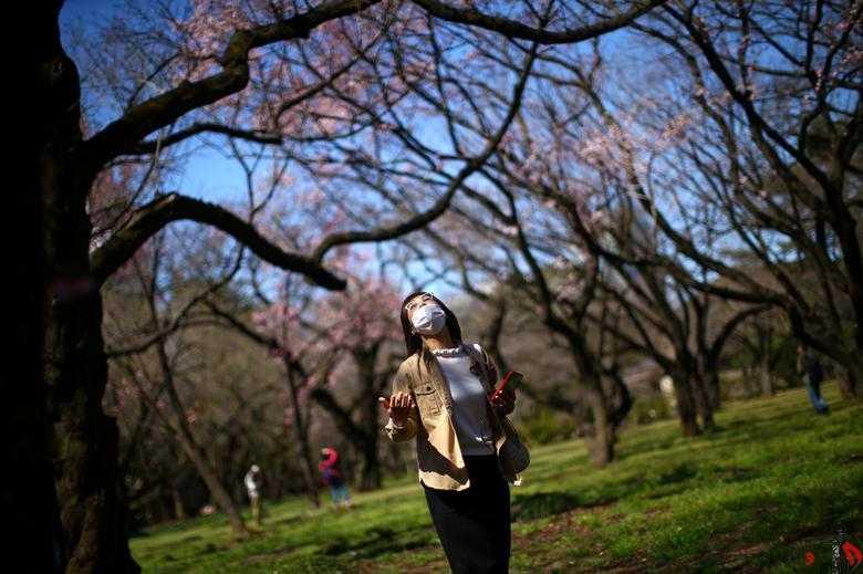 جهان / بهار / کرونا