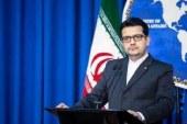 موسوی: وزارت امور خارجه هیچ دخالتی در اِعمال پروتکلهای بهداشتی ندارد