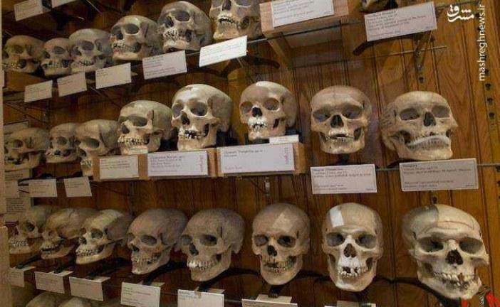 جنایت فرانسوی ! / یکی از هولناک ترین جنایتها، 17 آزمایش اتمی این کشور بین سال های 1960 تا 1966 در صحرای الجزایر است