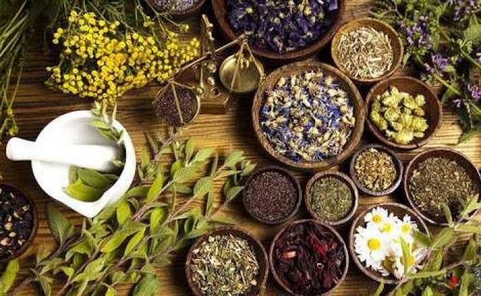 طراحی نرمافزار بانک اطلاعات گیاهی/امکان جستجوی موضوعی گیاهان خوراکی و دارویی