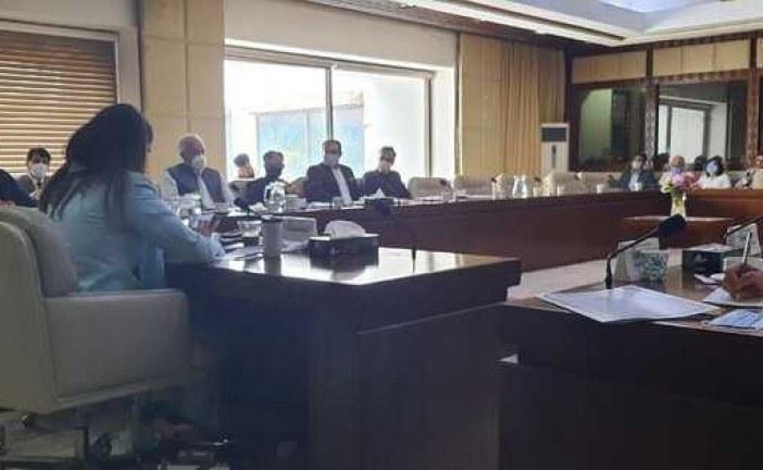 تاکیدبر اهمیت نشست صلح تهران در جلسه کمیته روابط خارجی پارلمان پاکستان